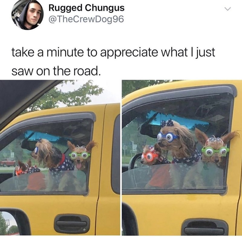 Vehicle door - Rugged Chungus @TheCrewDog96 take a minute to appreciate what I just saw on the road.
