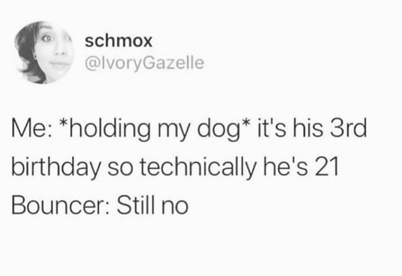 Text - schmox @IvoryGazelle Me: *holding my dog* it's his 3rd birthday so technically he's 21 Bouncer: Still no