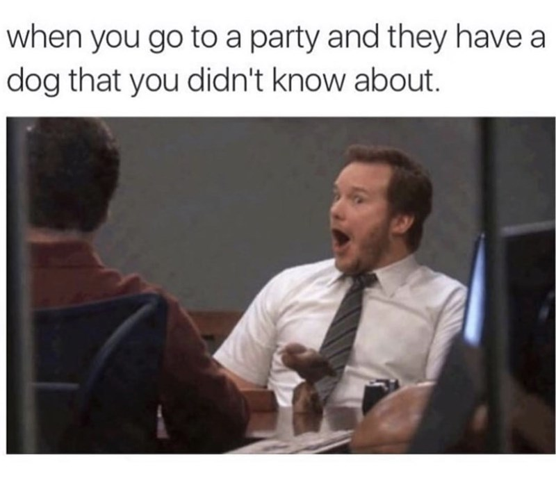 Text - when you go to a party and they have dog that you didn't know about.
