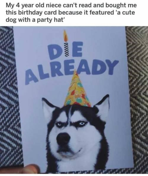"Meme - ""My 4 year old niece can't read and bought me this birthday card because it featured 'a cute dog with a party hat;' DIE ALREADY"""