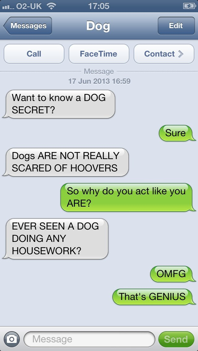dog text - Text - 17:05 I 02-UK Dog Messages Edit Call FaceTime Contact Message 17 Jun 2013 16:59 Want to know a DOG SECRET? Sure Dogs ARE NOT REALLY SCARED OF HOOVERS So why do you act like you ARE? EVER SEEN A DOG DOING ANY HOUSEWORK? OMFG That's GENIUS Message Send