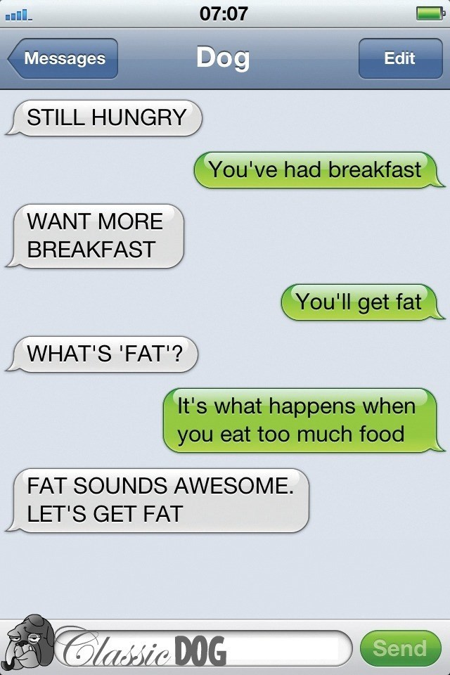 dog text - Text - 07:07 Dog Messages Edit STILL HUNGRY You've had breakfast WANT MORE BREAKFAST You'll get fat WHAT'S 'FAT'? It's what happens when you eat too much food FAT SOUNDS AWESOME LET'S GET FAT Classic DOG Send