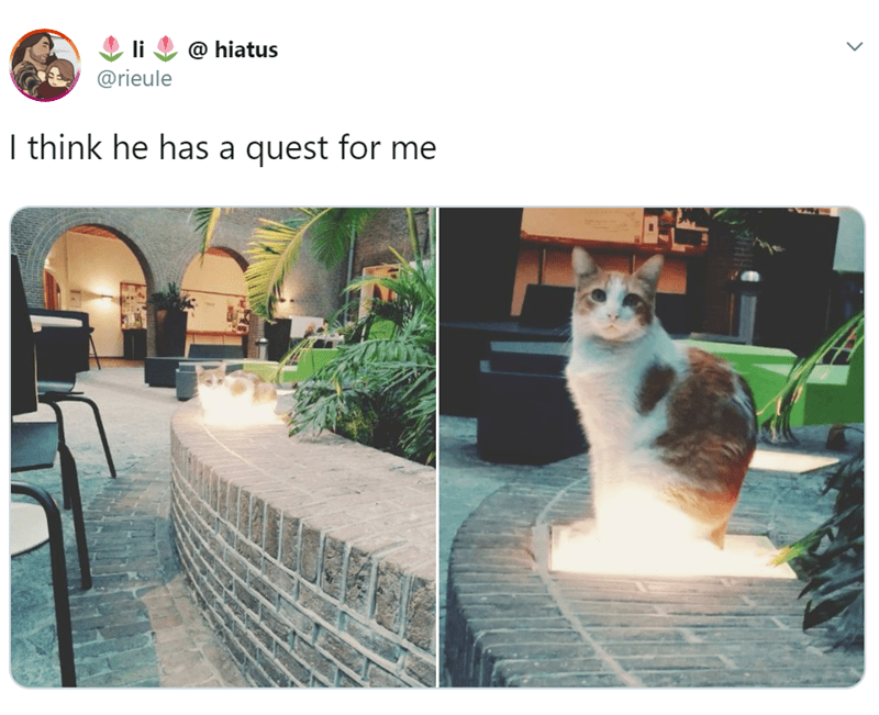 Cat - @ hiatus @rieule I think he has a quest for me >