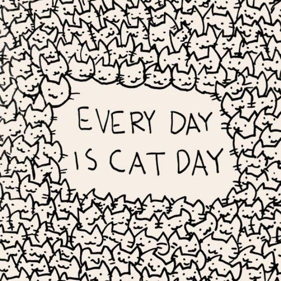 cat comics - 9342375680