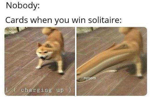 Dog - Nobody: Cards when you win solitaire: nyoom charging up)