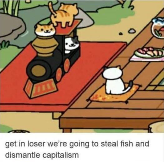 cat meme - Cartoon - get in loser we're going to steal fish and dismantle capitalism