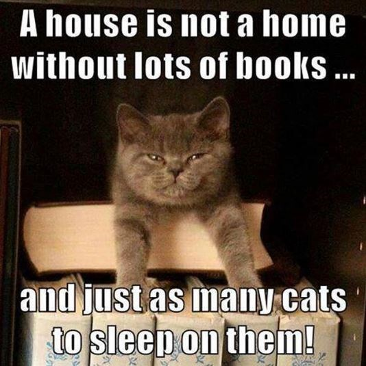 cat meme - Cat - A house is not a home without lots of books ... |and just as many.cats to sleep on them!