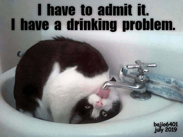 Photo caption - I have to admit it. I have a drinking problem. bajio6401 july 2019