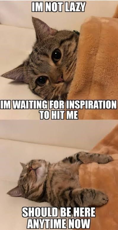 Cat - IM NOT LAZY IM WAITING FOR INSPIRATION TO HIT ME SHOULD BE HERE ANYTIME NOW