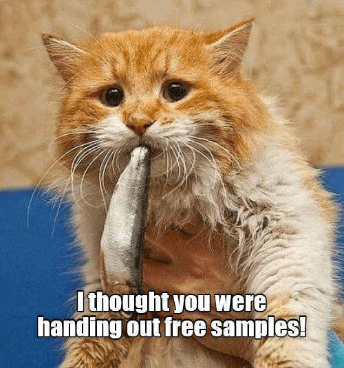 Cat - I thought you were handing out free samples!