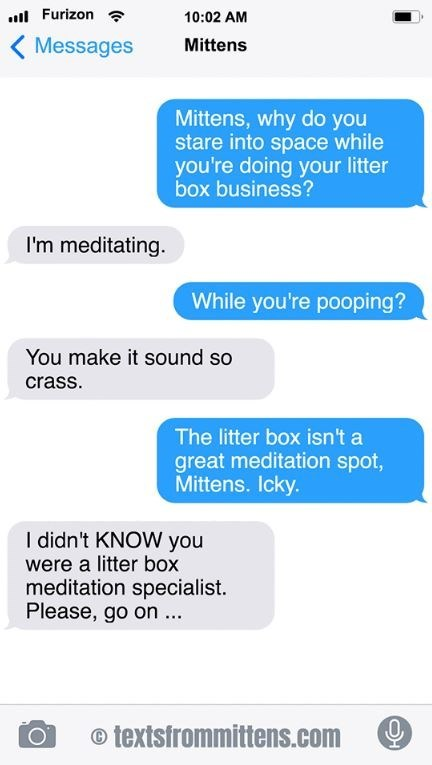 cat text - Text - Furizon 10:02 AM Messages Mittens Mittens, why do you stare into space while you're doing your litter box business? I'm meditating. While you're pooping? You make it sound so crass The litter box isn't a great meditation spot, Mittens. Icky. I didn't KNOW you were a litter box meditation specialist. Please, go on... textsfrommittens.com