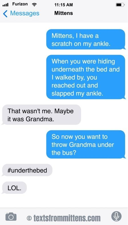 cat text - Text - Furizon 11:15 AM Messages Mittens Mittens, I have a scratch on my ankle. When you were hiding underneath the bed and I walked by, you reached out and slapped my ankle. That wasn't me. Maybe it was Grandma So now you want to throw Grandma under the bus? #underthebed LOL. textsfrommittens.com