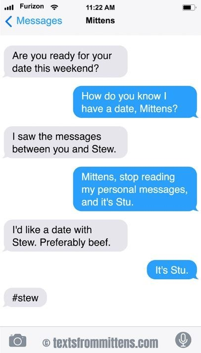 cat text - Text - Furizon 11:22 AM Messages Mittens Are you ready for your date this weekend? How do you know I have a date, Mittens? I saw the messages between you and Stew. Mittens, stop reading my personal messages, and it's Stu. I'd like a date with Stew. Preferably beef. It's Stu. #stew textsfrommittens.com