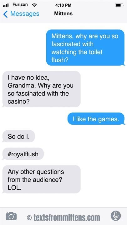 cat text - Text - Furizon 4:10 PM Messages Mittens Mittens, why are you so fascinated with watching the toilet flush? I have no idea, Grandma. Why are you so fascinated with the casino? I like the games. So do I #royalflush Any other questions from the audience? LOL. 0 o textsfrommittens.com