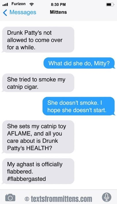 cat text - Text - Furizon 8:30 PM Messages Mittens Drunk Patty's not allowed to come over for a while. What did she do, Mitty? She tried to smoke my catnip cigar. She doesn't smoke. I hope she doesn't start. She sets my catnip toy AFLAME, and all you care about is Drunk Patty's HEALTH? My aghast is officially flabbered. #flabbergasted textsfrommittens.com