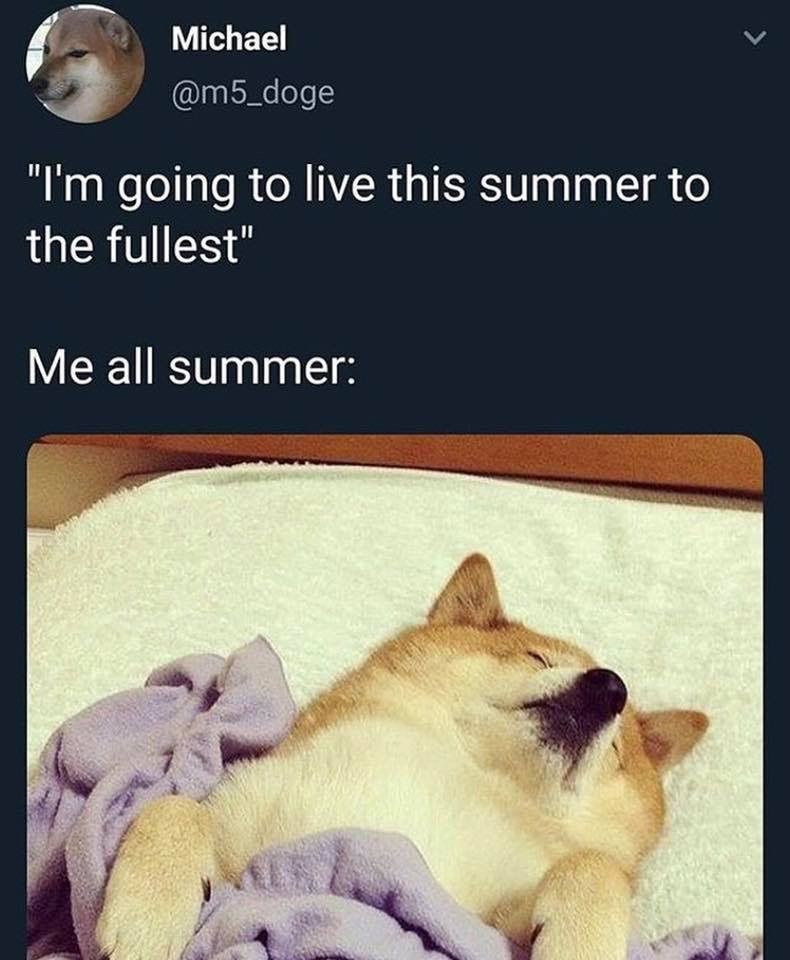 """Text - Michael L7 @m5_doge """"I'm going to live this summer to the fullest"""" Me all summer: ALS"""