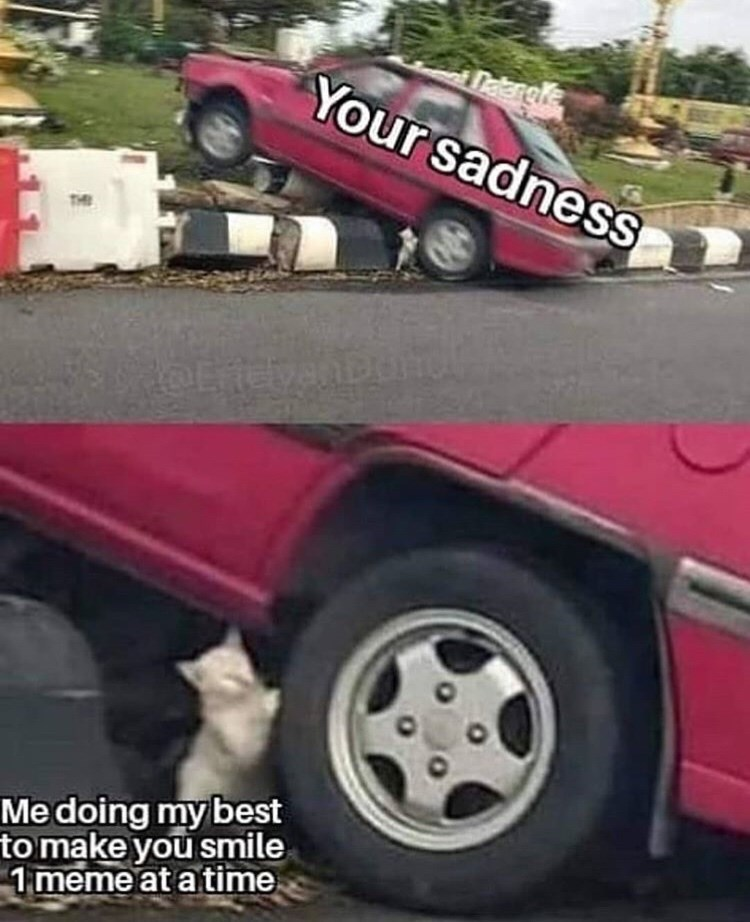 meme - Land vehicle - Tstargle Your sadness Medoing my best to make you smile 1 meme at a time