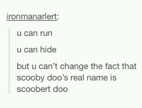 """Tumblr - """"u can run u can hide but u can't change the fact that scooby doo's real name is scoobert doo"""""""