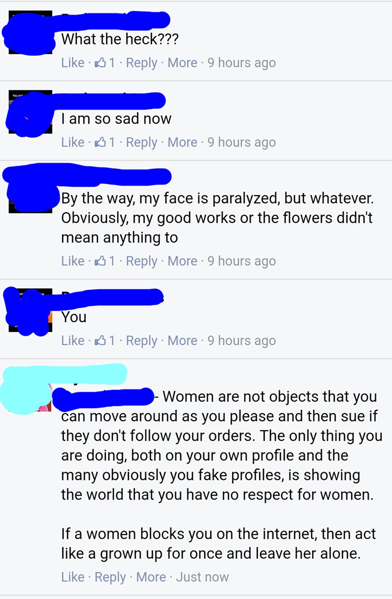 nice guy - Text - What the heck??? Like 1 Reply More 9 hours ago | am so sad now Like 1 Reply More 9 hours ago By the way, my face is paralyzed, but whatever. Obviously, my good works or the flowers didn't mean anything to Like 1 Reply More 9 hours ago You Like 1 Reply More 9 hours ago Women are not objects that you can move around as you please and then sue if they don't follow your orders. The only thing you are doing, both on your own profile and the many obviously you fake profiles, is showi