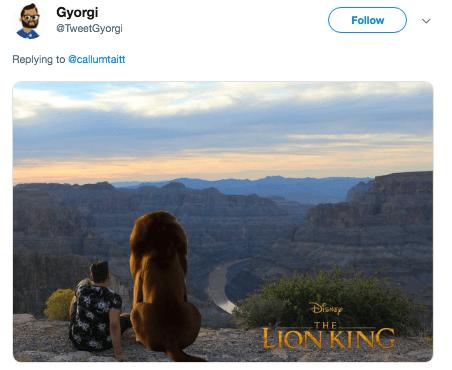 photoshop trolling - Sky - Gyorgi Follow TweetGyorgi Replying to @callumtait THE LION KING