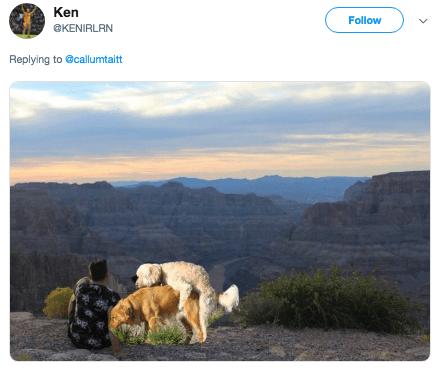 photoshop trolling - Wildlife - Ken Follow @KENIRLRN Replying to @callumtaitt