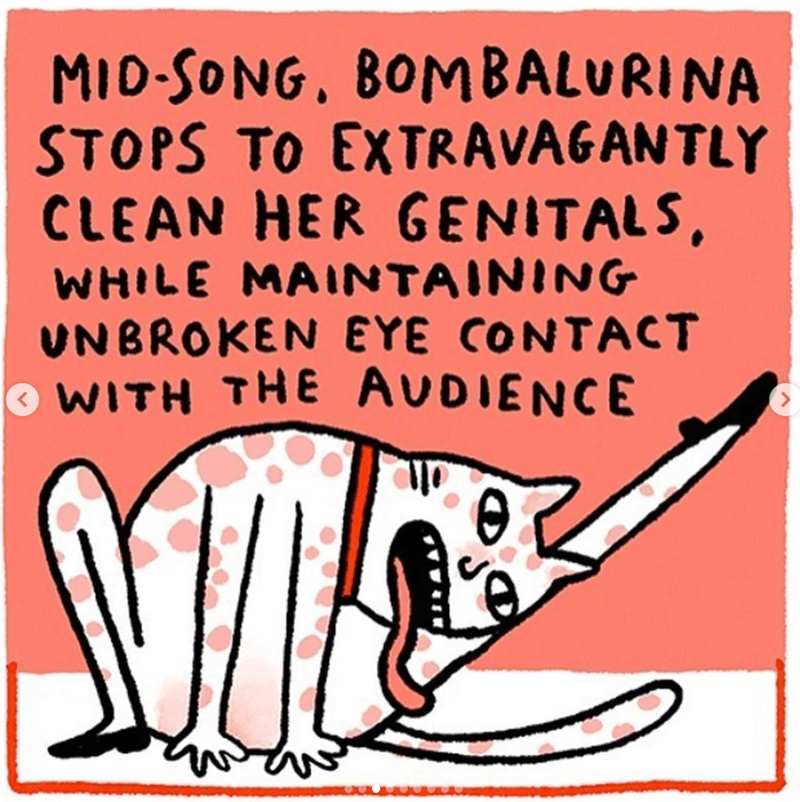cats movie - Text - MID-SONG, BOMBALURINA STOPS TO EXTRAVAGAN TLY CLEAN HER GENITALS, WHILE MAINTAINING UNBROKEN EYE CONTACT WITH THE AUDIENCE wwd