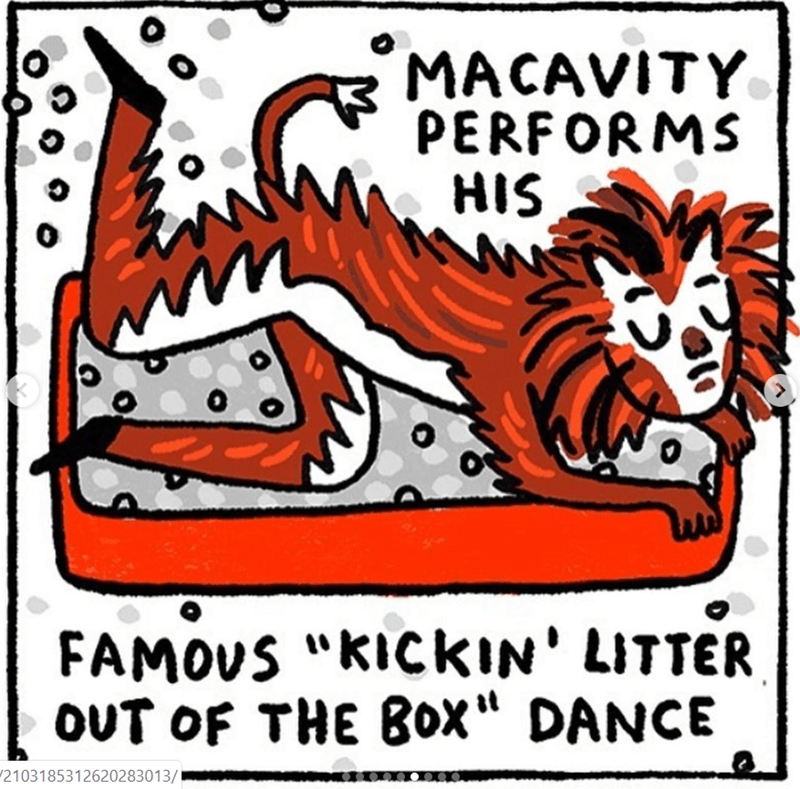 """cats movie - Font - MACAVITY PERFORMS HIS FAMOUS """"KICKIN' LITTER, oUT OF THE Box"""" DANCE 2103185312620283013/"""