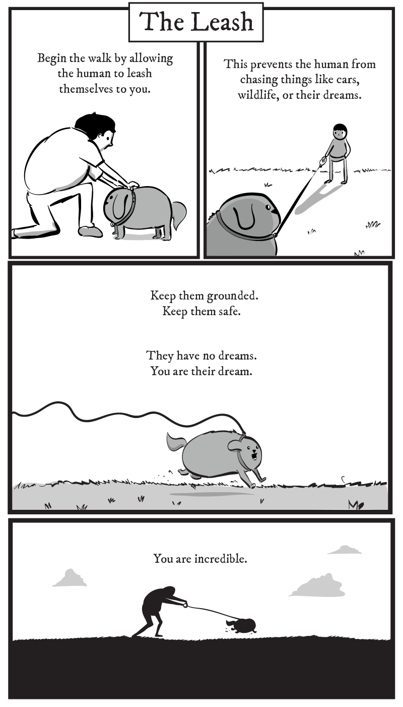 dog comic - Text - The Leash Begin the walk by allowing the human to leash This prevents the human from chasing things like cars, wildlife, or their dreams themselves to you. Keep them grounded. Keep them safe. They have no dreams. You are their dream You are incredible