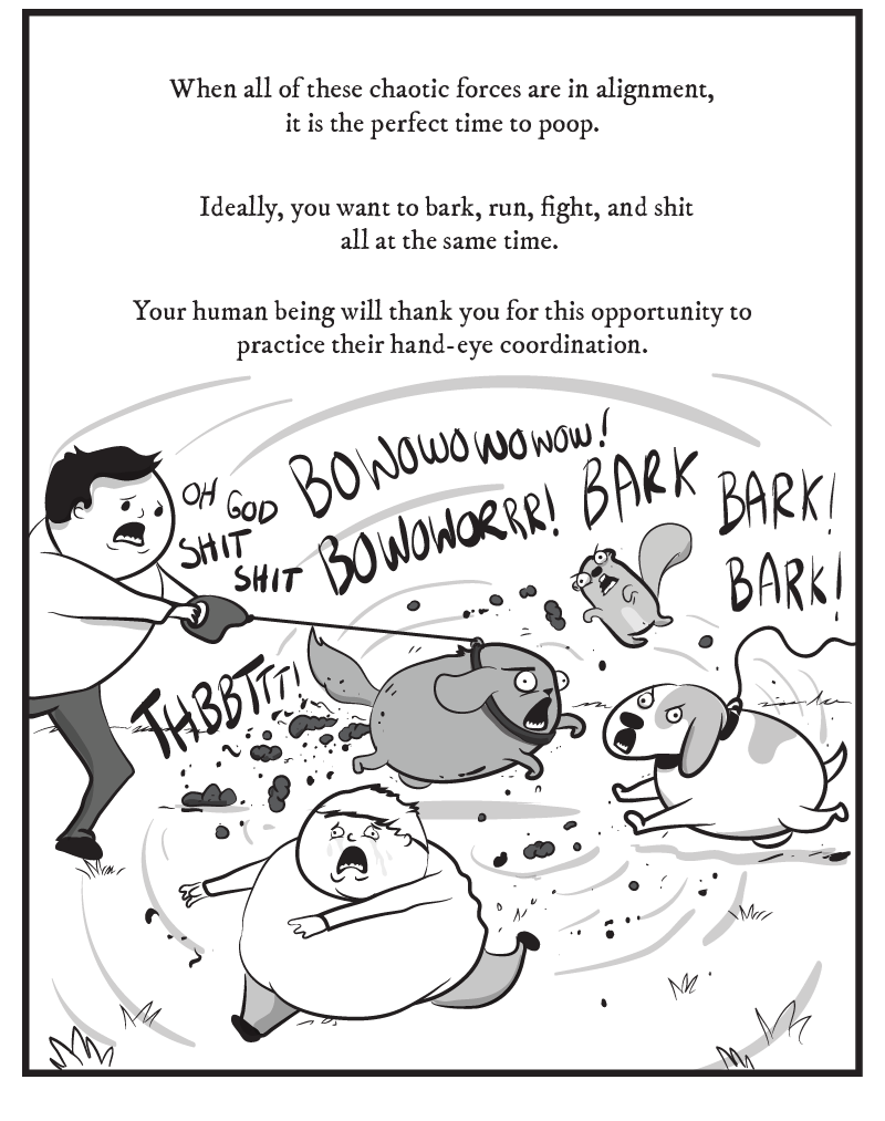 dog comic - Text - When all of these chaotic forces are in alignment, it is the perfect time to poop. Ideally, you want to bark, run, fight, and shit all at the same time. Your human being will thank you for this opportunity t o practice their hand-eye coordination. BOWOwowowow! OH GOD OWoRRR o^ BARK | SHIT BARKI THBBTTA Mk