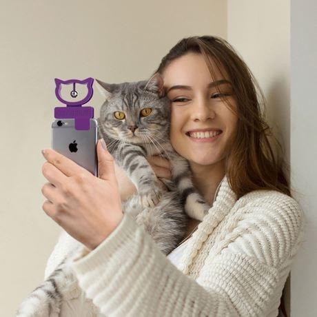 cat selfie - Cat