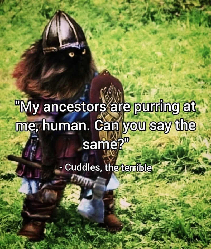 """animal meme - Adaptation - """"My ancestors are purring at merhuman. Can you say the same?"""" -Cuddles, the terrible"""