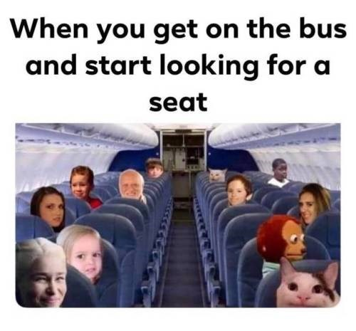 animal meme - People - When you get on the bus and start looking for a seat