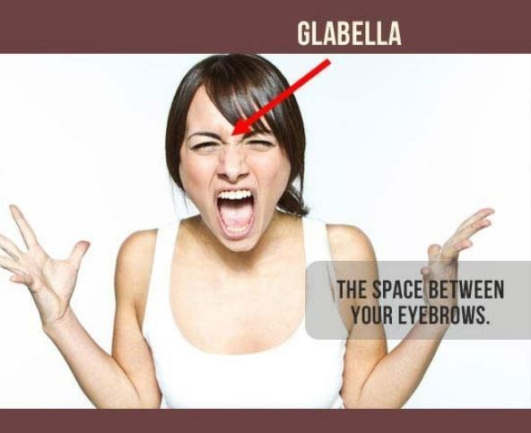 Face - GLABELLA THE SPACE BETWEEN YOUR EYEBROWS.