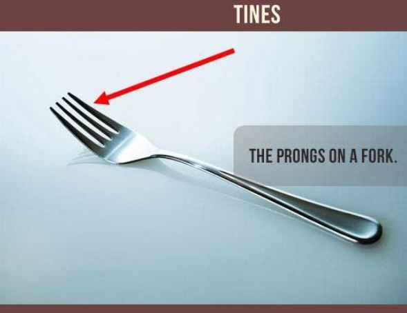 Fork - TINES THE PRONGS ON A FORK.