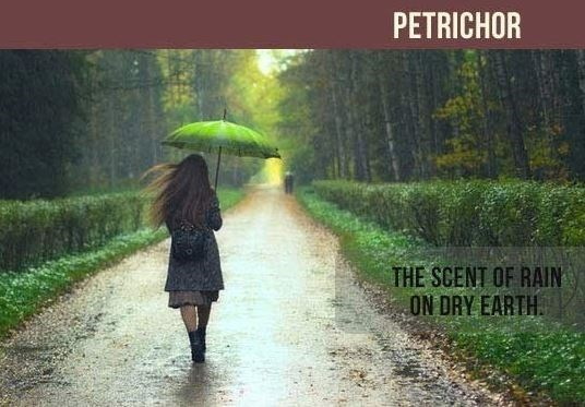 People in nature - PETRICHOR THE SCENT OF RAIN ON DRY EARTH