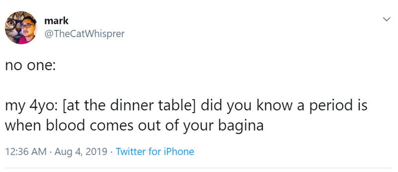 Text - mark @TheCatWhisprer no one: my 4yo: [at the dinner table] did you know a period is when blood comes out of your bagina 12:36 AM Aug 4, 2019 Twitter for iPhone >