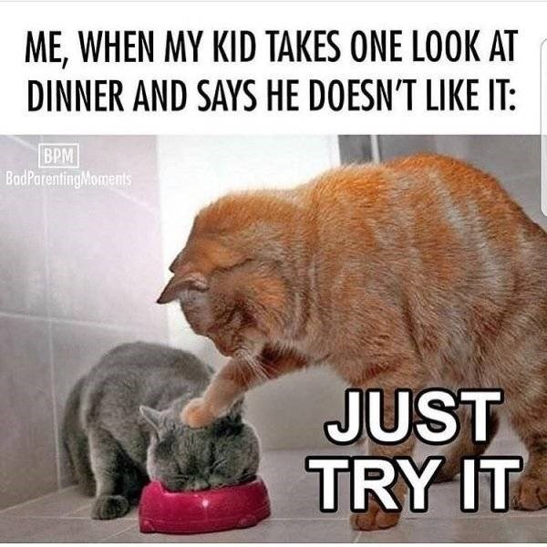 Photo caption - ME,WHEN MY KID TAKES ONE LOOK AT DINNER AND SAYS HE DOESN'T LIKE IT: BPM BadParentingMoments JUST TRY IT