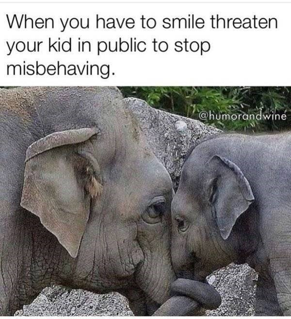 Elephant - When you have to smile threaten your kid in public to stop misbehaving @humorandwine