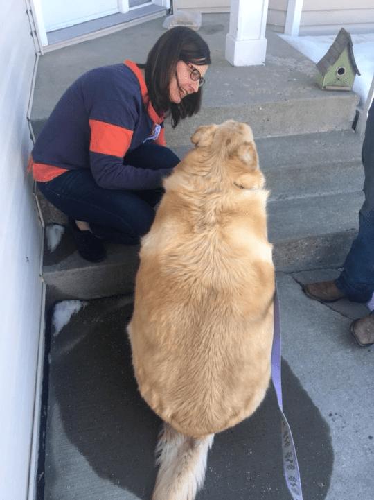 Dog - e are ass