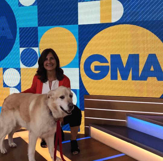 Dog - GMA