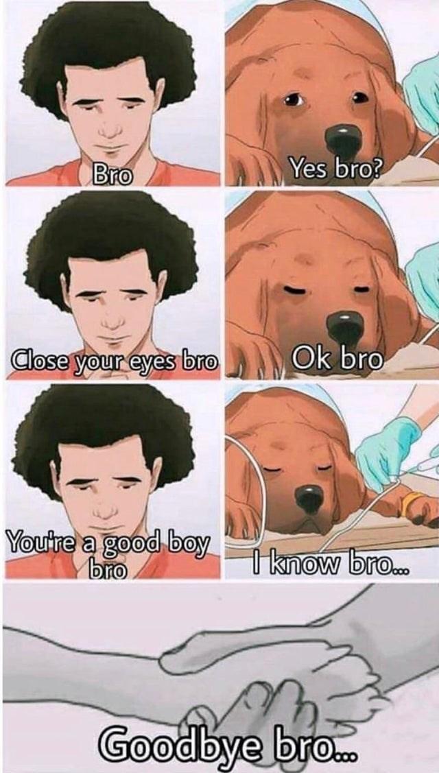 sad comic - Face - Yes bro? Bro Ok bro Close your eyes bro Youtre a good boy bro I know bro... Goodbye br..