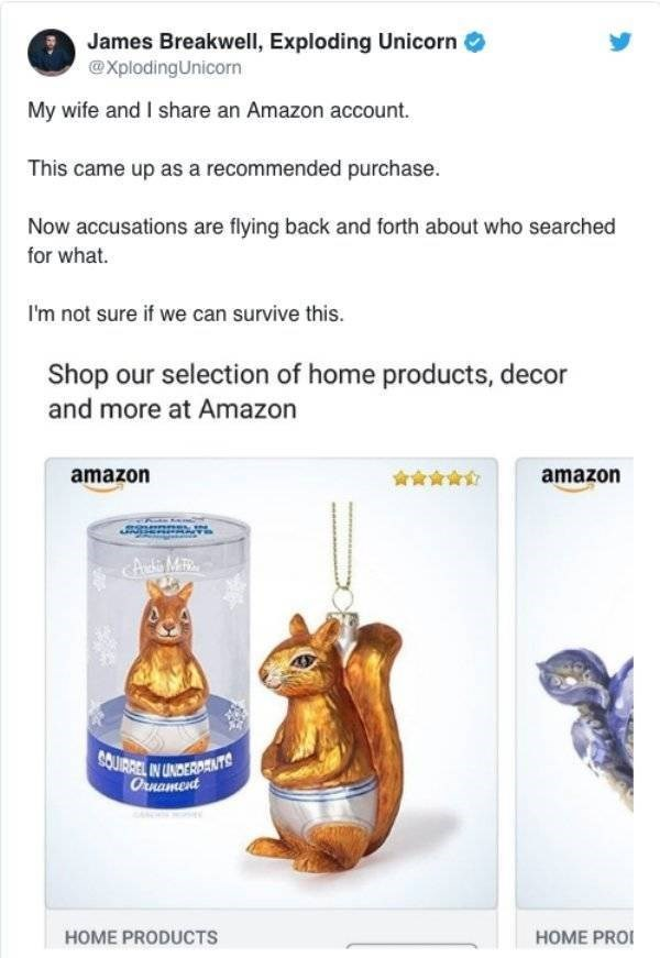 James Breakwell, Exploding Unicorn @XplodingUnicorn My wife and I share an Amazon account This came up as a recommended purchase. Now accusations are flying back and forth about who searched for what. I'm not sure if we can survive this. Shop our selection of home products, decor and more at Amazon amazon amazon cA di Mit SOUIRRELIN UNDERDANTS Ornament HOME PRO HOME PRODUCTS