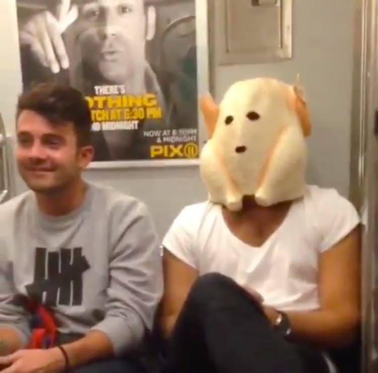 public transport - Companion dog - THERE'S THING TCH AT G 30PM OMIDEGHT NOW AT & MIDNIGH PIXO