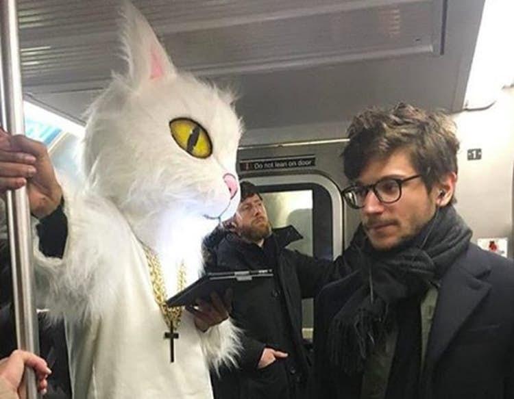 public transport - Cat - 0o st lean on door 1