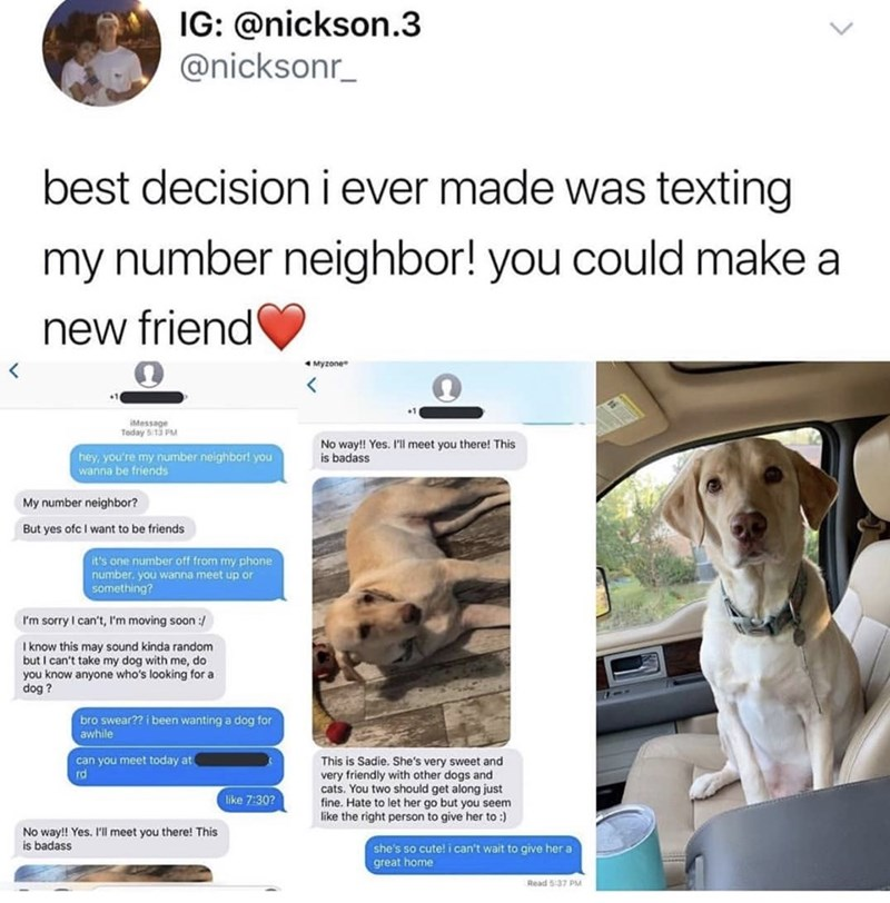 Dog breed - IG: @nickson.3 @nicksonr_ best decision i ever made was texting my number neighbor! you could make a new friend Myzone IMessage Today 5:13 PM No way!! Yes. I'll meet you there! This is badass hey,you're my number neighbor! you wanna be friends My number neighbor? But yes ofc I want to be friends it's one number off from my phone number. you wanna meet up or something? I'm sorry I can't, I'm moving soon :/ I know this may sound kinda random but I can't take my dog with me, do you know