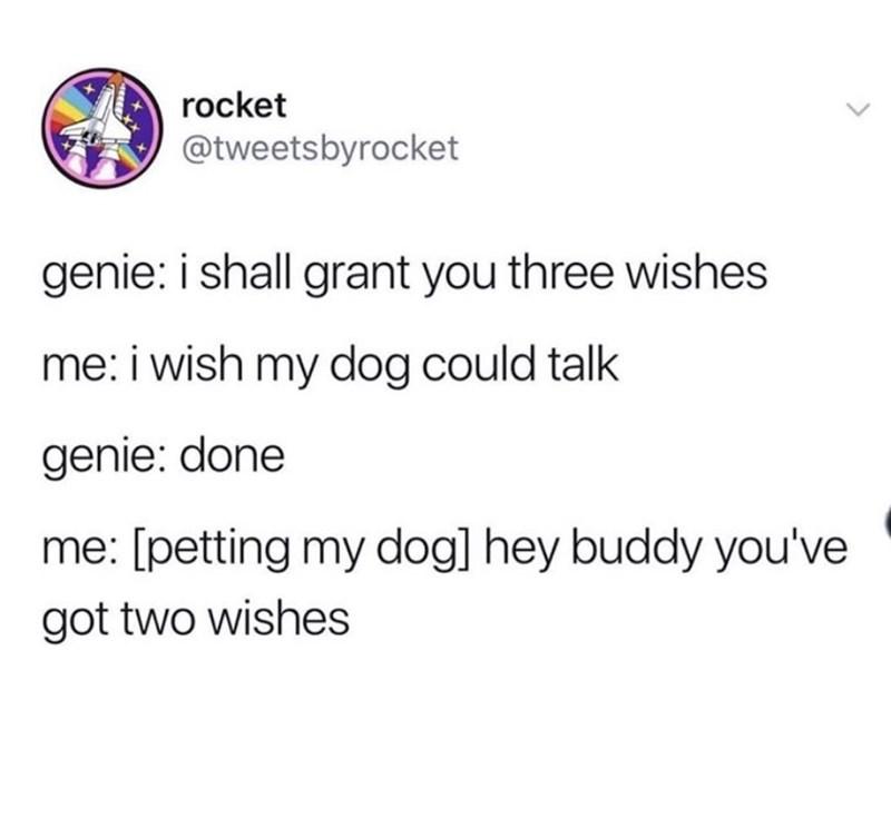 Text - rocket @tweetsbyrocket genie: i shall grant you three wishes me: i wish my dog could talk genie: done me: [petting my dogl hey buddy you've got two wishes
