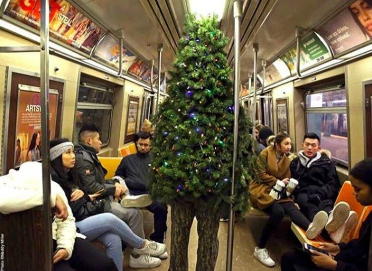 Funny photo of a person dressed in a Christmas tree costume