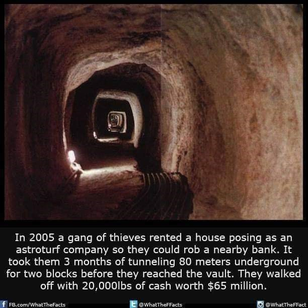 Photography - In 2005 a gang of thieves rented a house posing as an astroturf company so they could rob a nearby bank. It took them 3 months of tunneling 80 meters underground for two blocks before they reached the vault. They walked off with 20,000lbs of cash worth $65 million Ewhat TheFFacts FB.Com/WhatTheFacts whatTheFFact