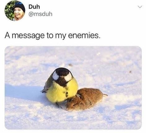 """Meme - """"A message to my enemies."""""""