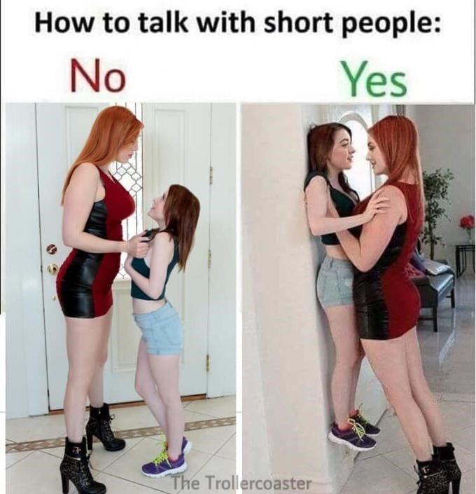 porn meme - Clothing - How to talk with short people: Yes No The Trollercoaster